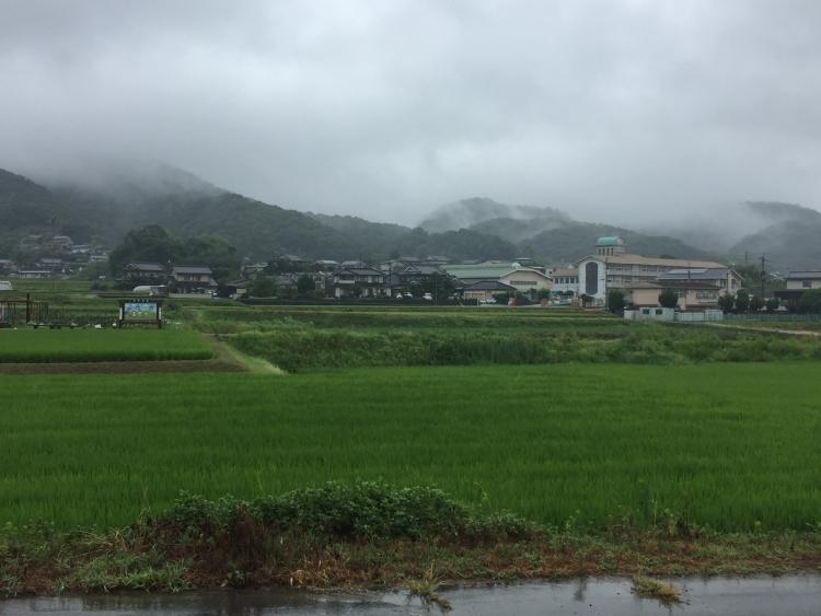 田舎の風景(文:印刷製本部 福本)